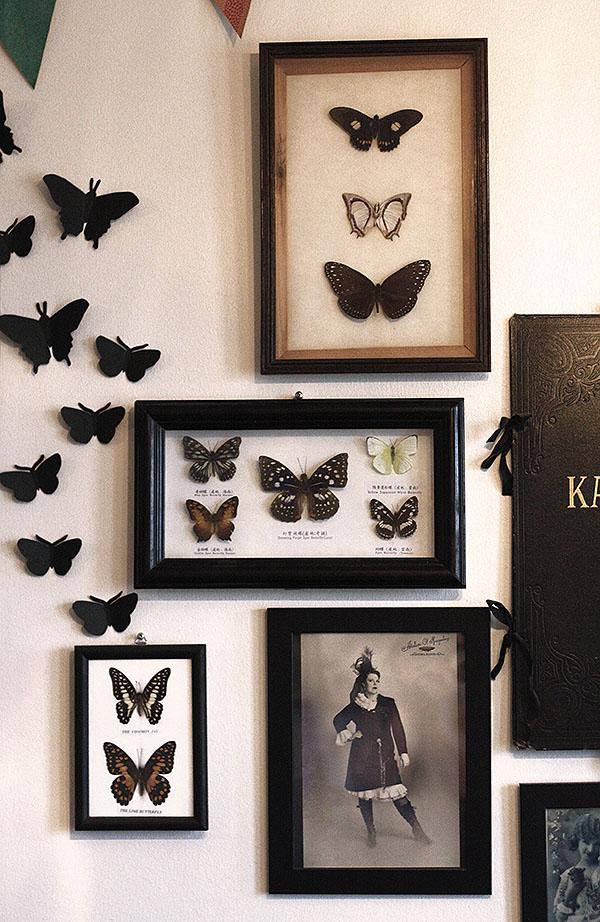 morebutterflies1