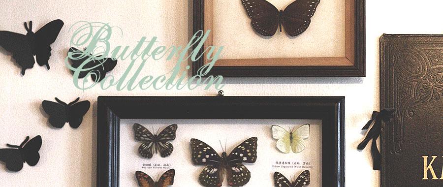 butterflybanner