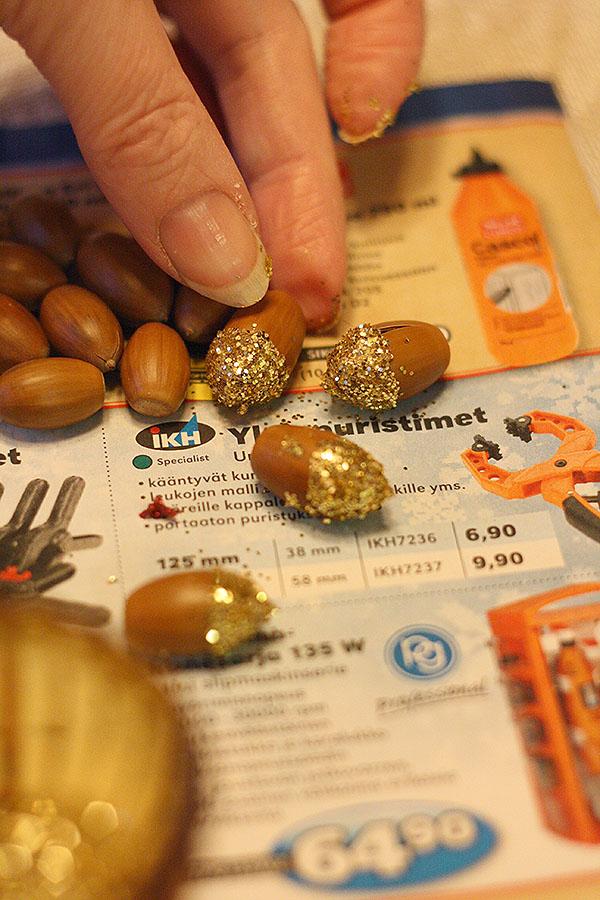 acorns5